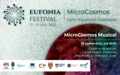 Aradul devine un MicroCosmos muzical plin de culoare